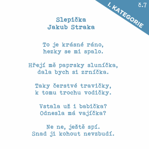 7_Straka_Slepička.jpg